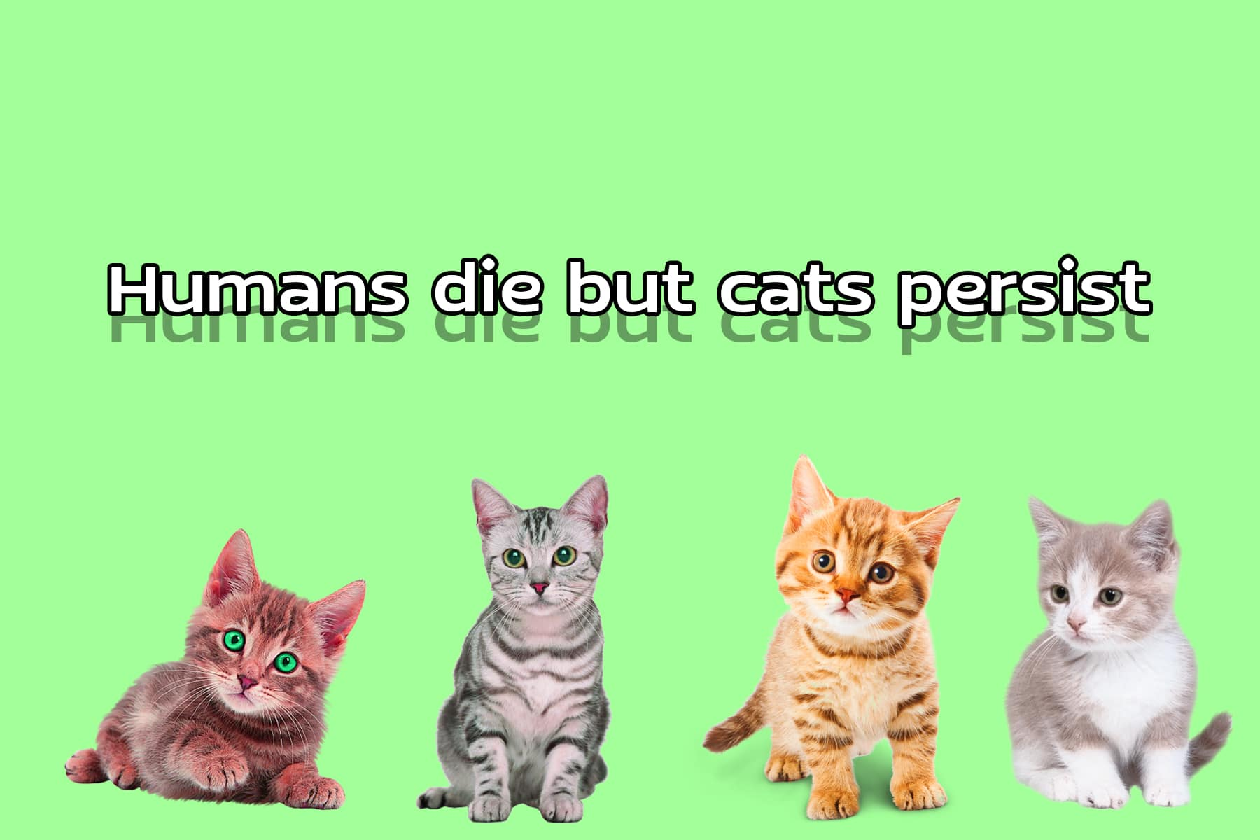 Humans die but cats persist